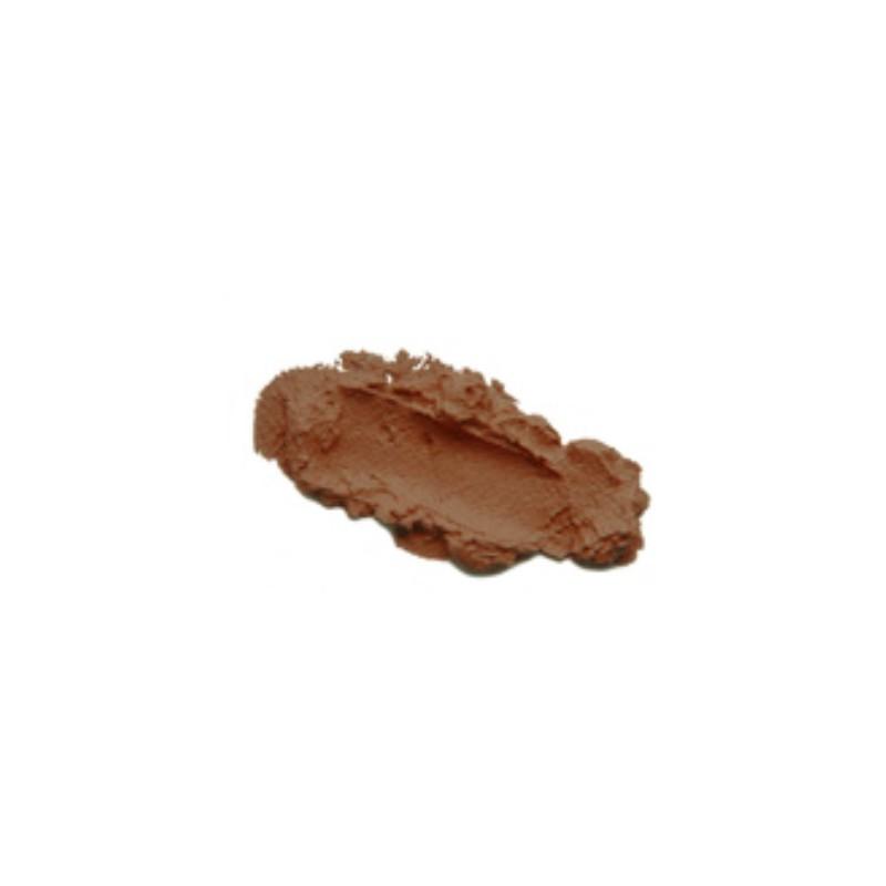 Fond de teint compact perfect skin ps 06 true colors